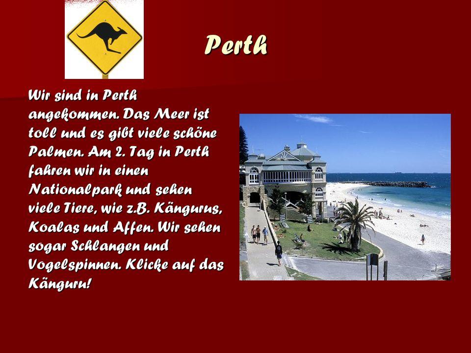 Perth Wir sind in Perth angekommen.Das Meer ist toll und es gibt viele schöne Palmen.