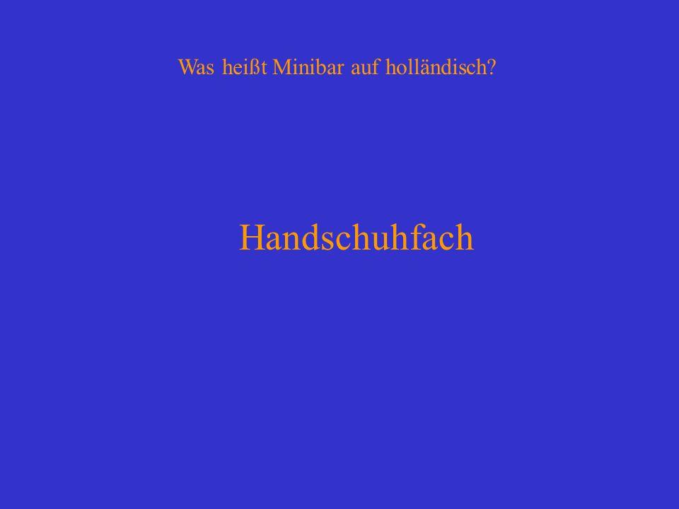 Was heißt Minibar auf holländisch? Handschuhfach