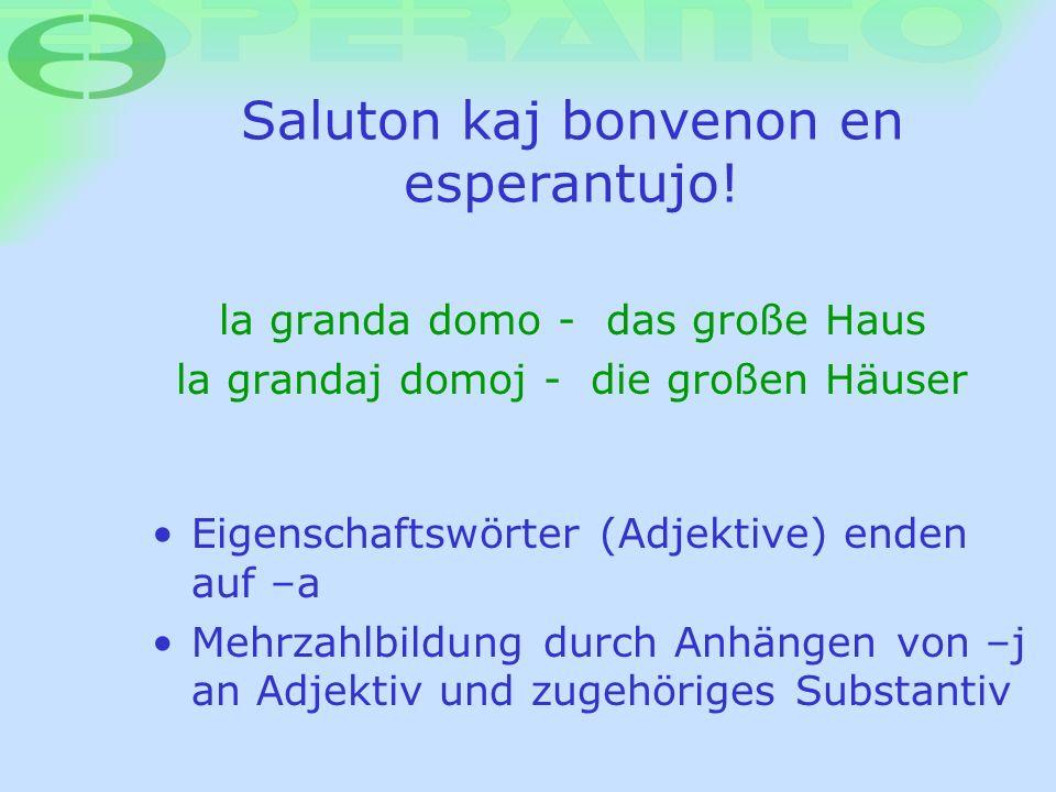Saluton kaj bonvenon en esperantujo! la granda domo - das große Haus la grandaj domoj - die großen Häuser Eigenschaftswörter (Adjektive) enden auf –a