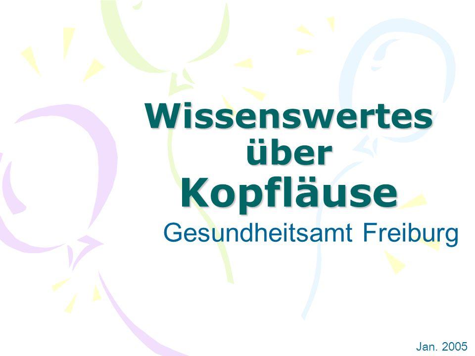Wissenswertes über Kopfläuse Gesundheitsamt Freiburg Jan. 2005