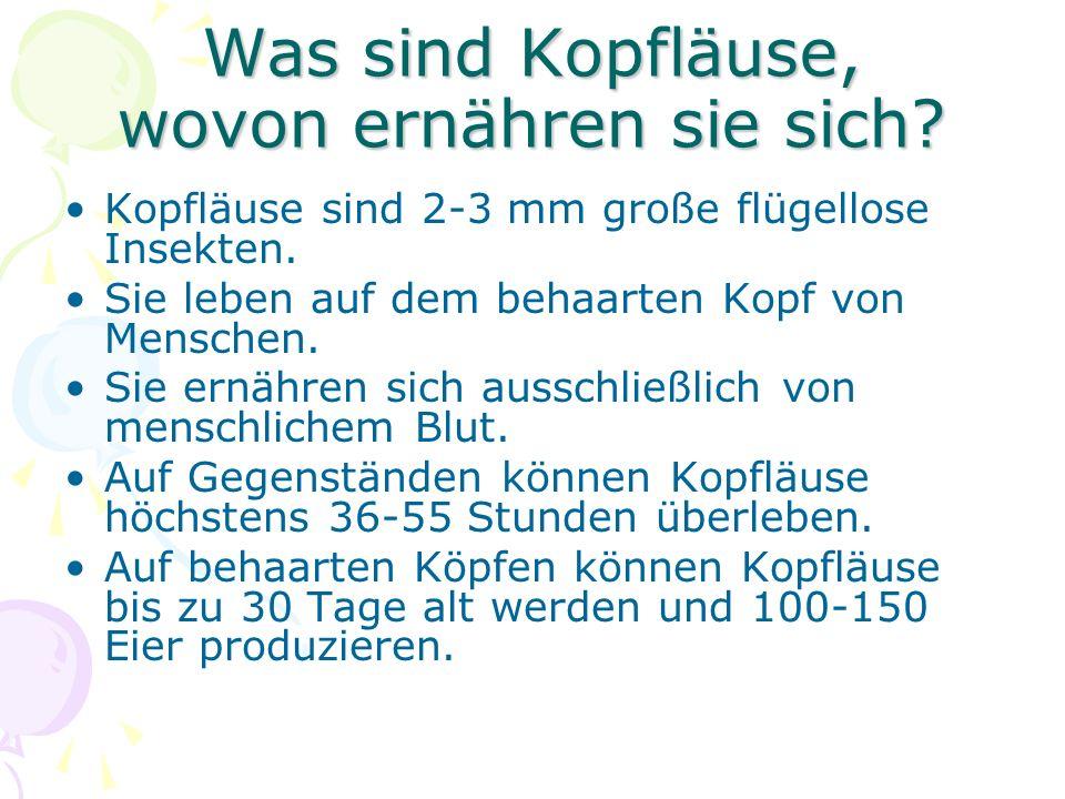 Mitteilung an Kindergarten, Schule, Hort Kinder und Jugendliche kommen mit ihren Altersgenossen in Kindergarten, Schule, Hort in engen Kontakt.