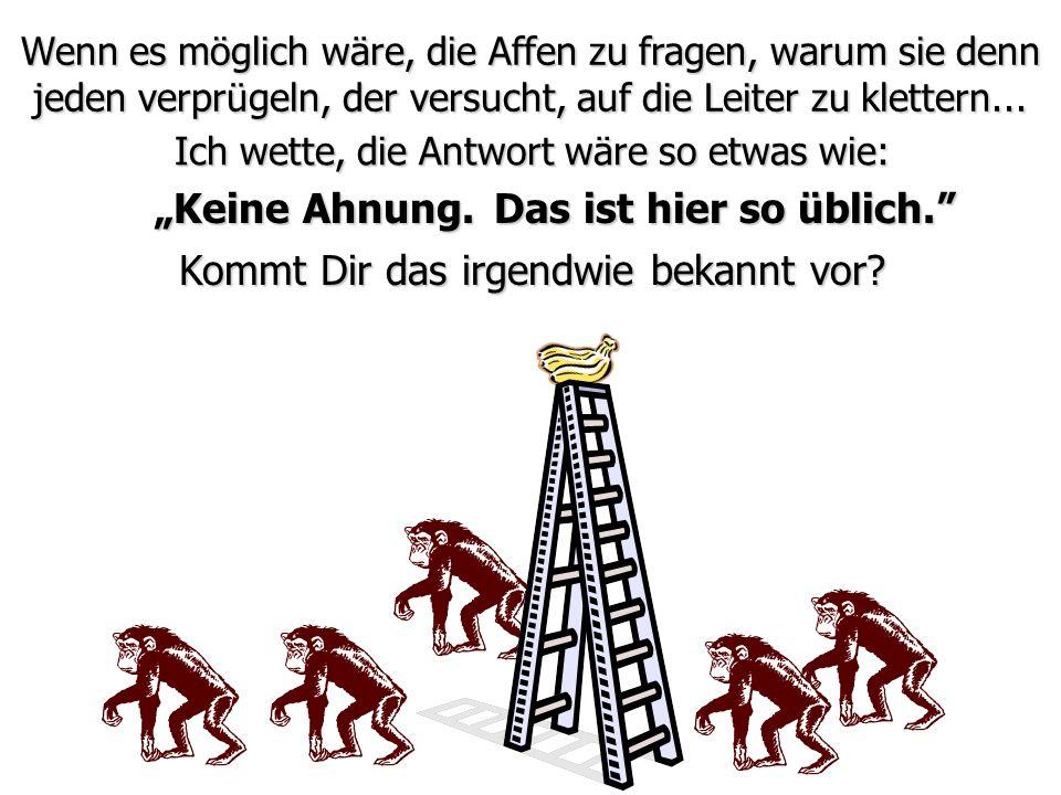 Wenn es möglich wäre, die Affen zu fragen, warum sie denn jeden verprügeln, der versucht, auf die Leiter zu klettern... Kommt Dir das irgendwie bekann
