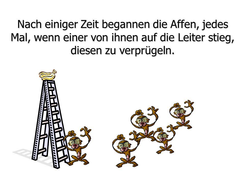 Nach einiger Zeit begannen die Affen, jedes Mal, wenn einer von ihnen auf die Leiter stieg, diesen zu verprügeln.