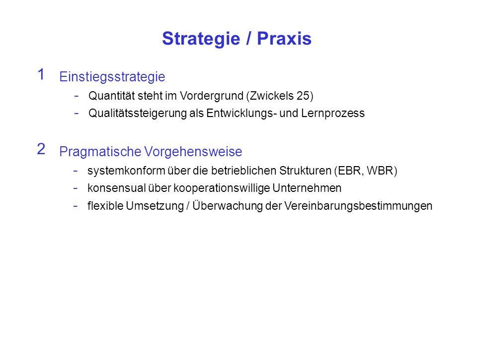 Strategie / Praxis Einstiegsstrategie - Quantität steht im Vordergrund (Zwickels 25) - Qualitätssteigerung als Entwicklungs- und Lernprozess 1 Pragmatische Vorgehensweise - systemkonform über die betrieblichen Strukturen (EBR, WBR) - konsensual über kooperationswillige Unternehmen - flexible Umsetzung / Überwachung der Vereinbarungsbestimmungen 2
