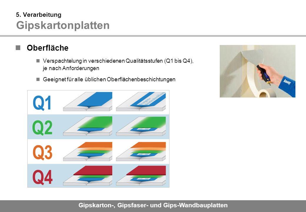 Gipskarton-, Gipsfaser- und Gips-Wandbauplatten 5.