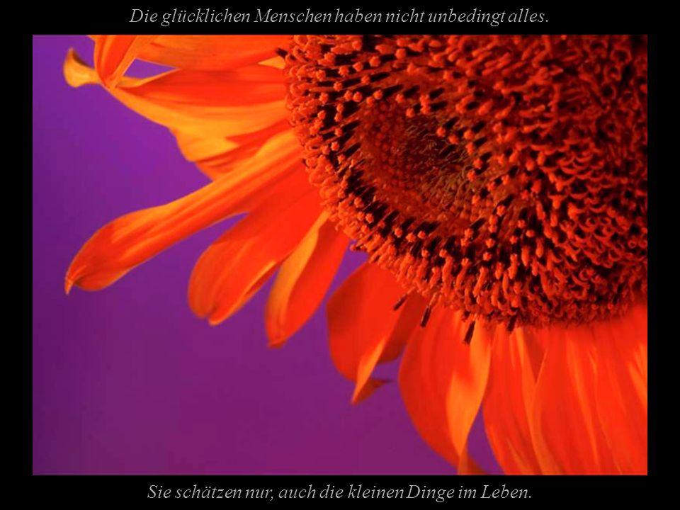 Das Glück wartet Arrangement & Text: Dottore El Cidre Copyright by PowerPointZauber 20.12.2005