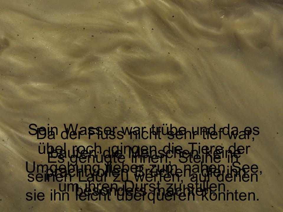 … der träge in seinem lehmigen Bett seinen Weg zu seiner Mutter Ganges suchte.