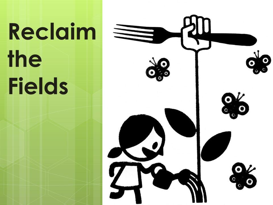 Konstellation/Gruppe von (potentiellen) Bäuer_innen, landlosen, Landarbeiter_innen Zugang zu Land, kollektiver Anbau, freies Saatgut Kooperativ, kollektiv, unabhängig – gegen jede Form von Autorität und Hierarchie Keine Form von Diskriminierung wird akzeptiert oder toleriert RtF unterstützt die Visionen und Kämpfe von via Campesina