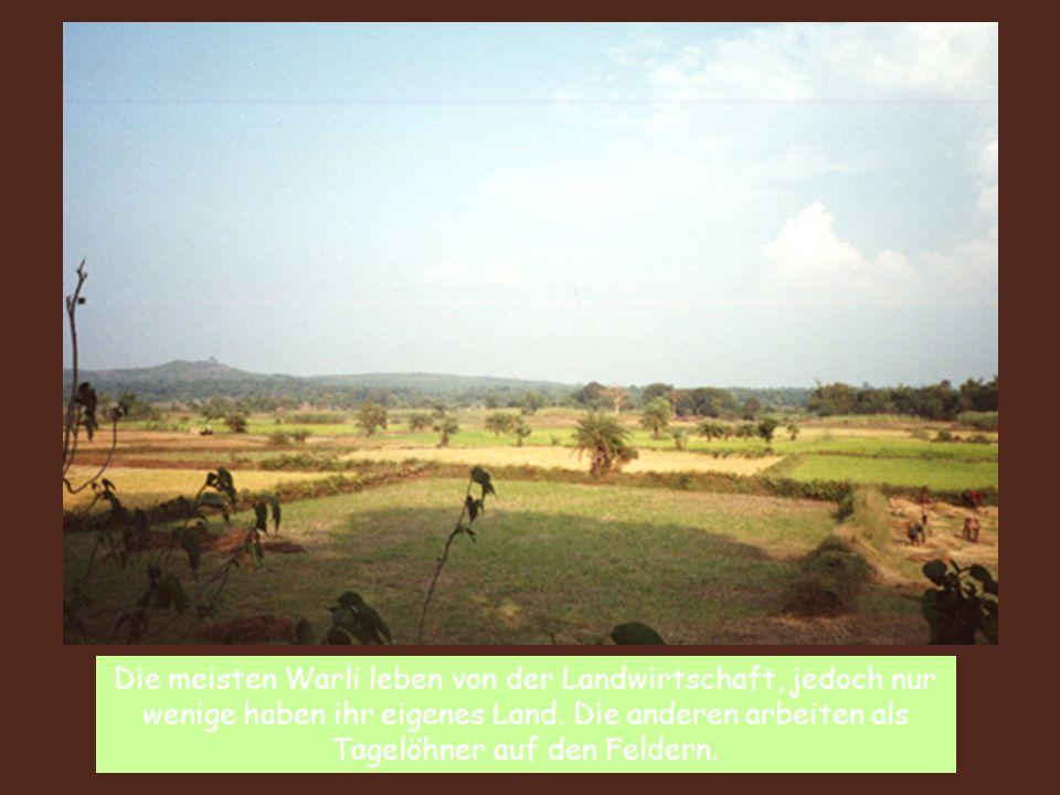 Die meisten Warli leben von der Landwirtschaft, jedoch nur wenige haben ihr eigenes Land. Die anderen arbeiten als Tagelöhner auf den Feldern.