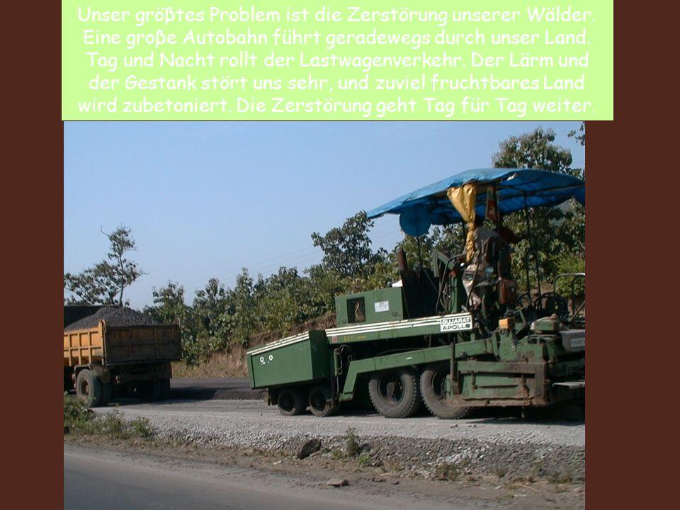 Unser gröβtes Problem ist die Zerstörung unserer Wälder. Eine groβe Autobahn führt geradewegs durch unser Land. Tag und Nacht rollt der Lastwagenverke