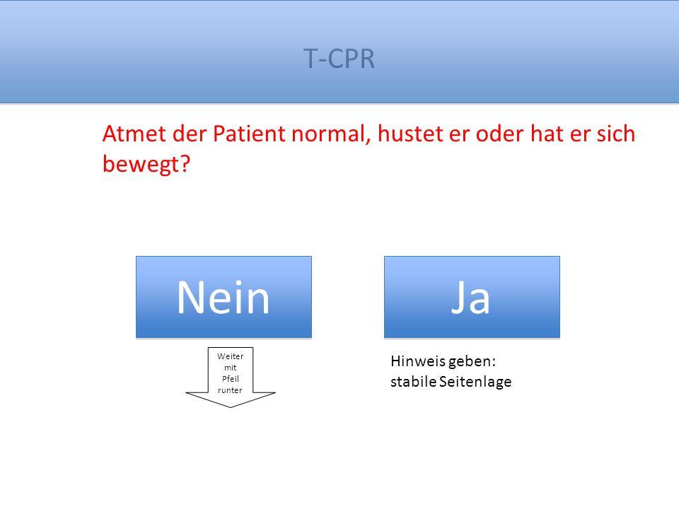 T-CPR Wollen Sie, (Name des Anrufers), versuchen, nach meiner Anleitung eine Wiederbelebung durchzuführen, bis der Notarzt da ist.
