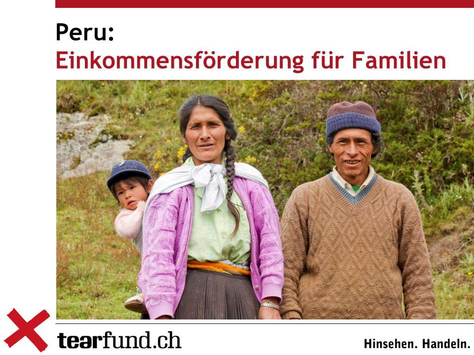 Peru: Einkommensförderung für Familien