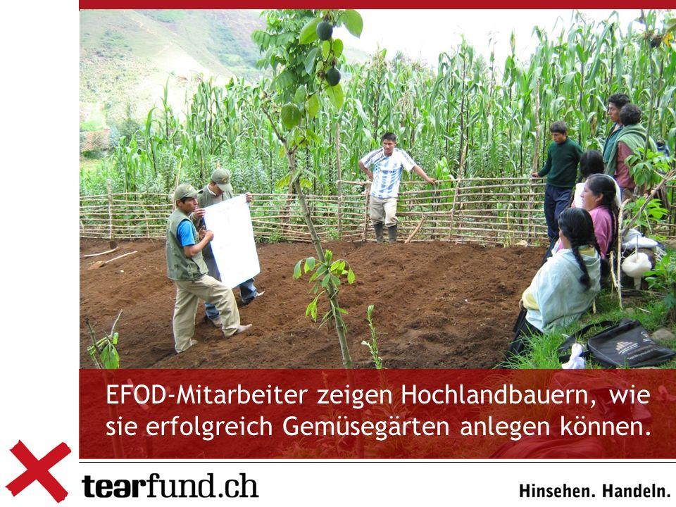 Verantwortung für regionale Entwicklung übernehmen EFOD-Mitarbeiter zeigen Hochlandbauern, wie sie erfolgreich Gemüsegärten anlegen können.