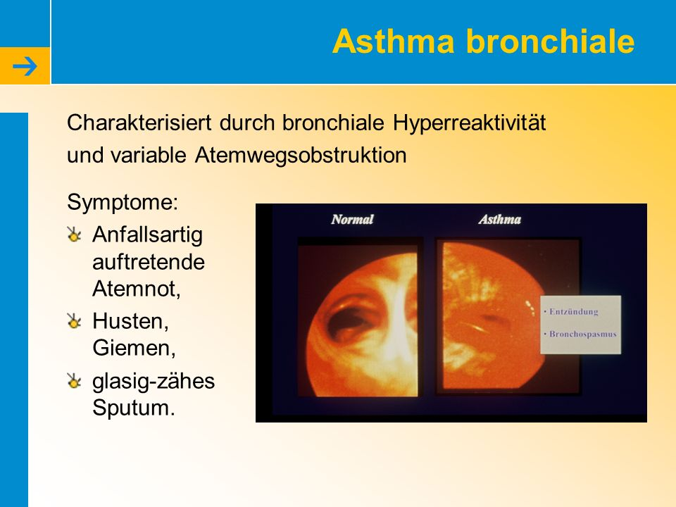 COPD – Was ist das.Chronic Obstructive Pulmonary Disease H.