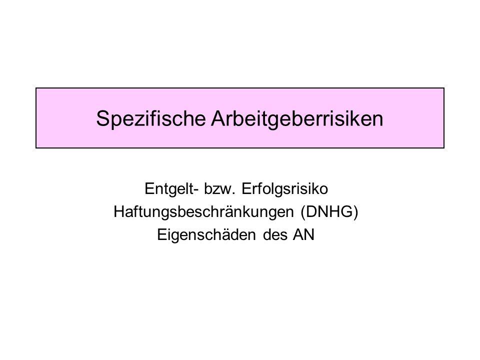 Spezifische Arbeitgeberrisiken Entgelt- bzw. Erfolgsrisiko Haftungsbeschränkungen (DNHG) Eigenschäden des AN