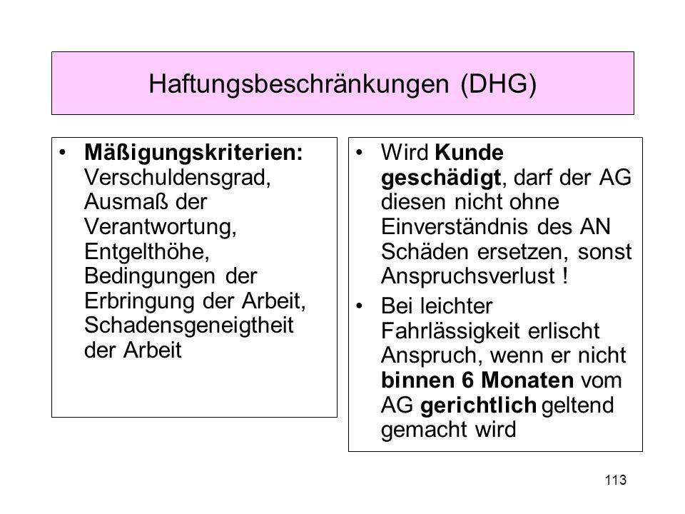 113 Haftungsbeschränkungen (DHG) Mäßigungskriterien: Verschuldensgrad, Ausmaß der Verantwortung, Entgelthöhe, Bedingungen der Erbringung der Arbeit, S