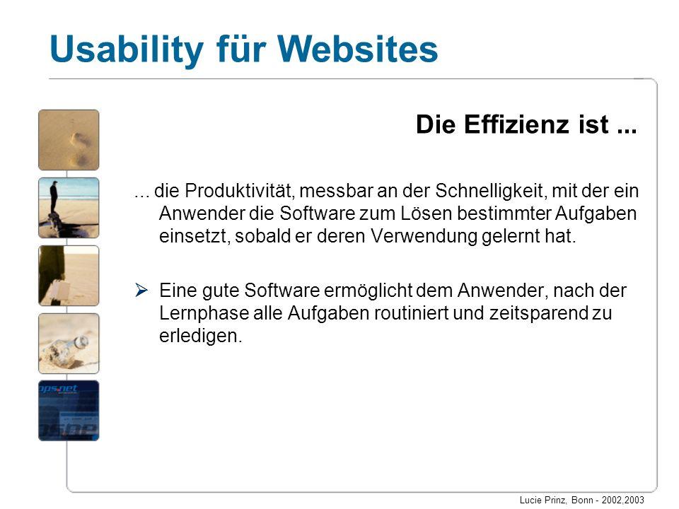 Lucie Prinz, Bonn - 2002,2003 Usability für Websites Die Effizienz ist...... die Produktivität, messbar an der Schnelligkeit, mit der ein Anwender die