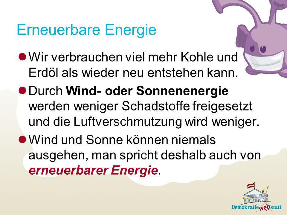 Erneuerbare Energie Wir verbrauchen viel mehr Kohle und Erdöl als wieder neu entstehen kann.