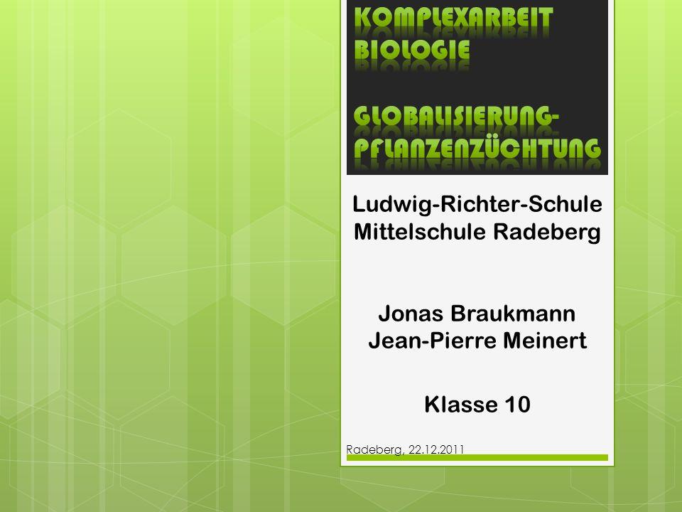 Ludwig-Richter-Schule Mittelschule Radeberg Jonas Braukmann Jean-Pierre Meinert Klasse 10 Radeberg, 22.12.2011