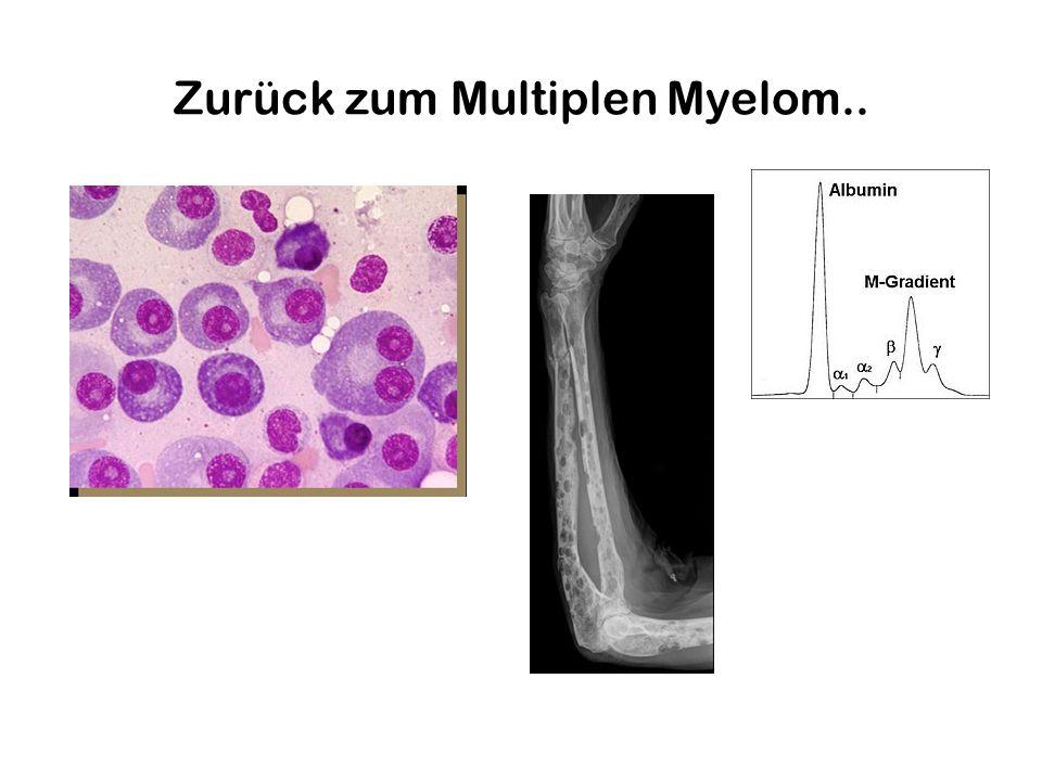 Zurück zum Multiplen Myelom..