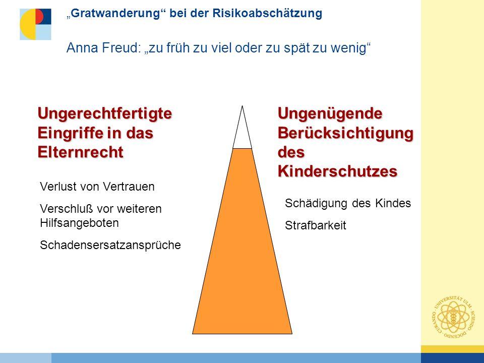 Kevin Chronologie des Versagens (Süddeutsche Zeitung, 31.10.2006 Bei Kevins Geburt am 23.