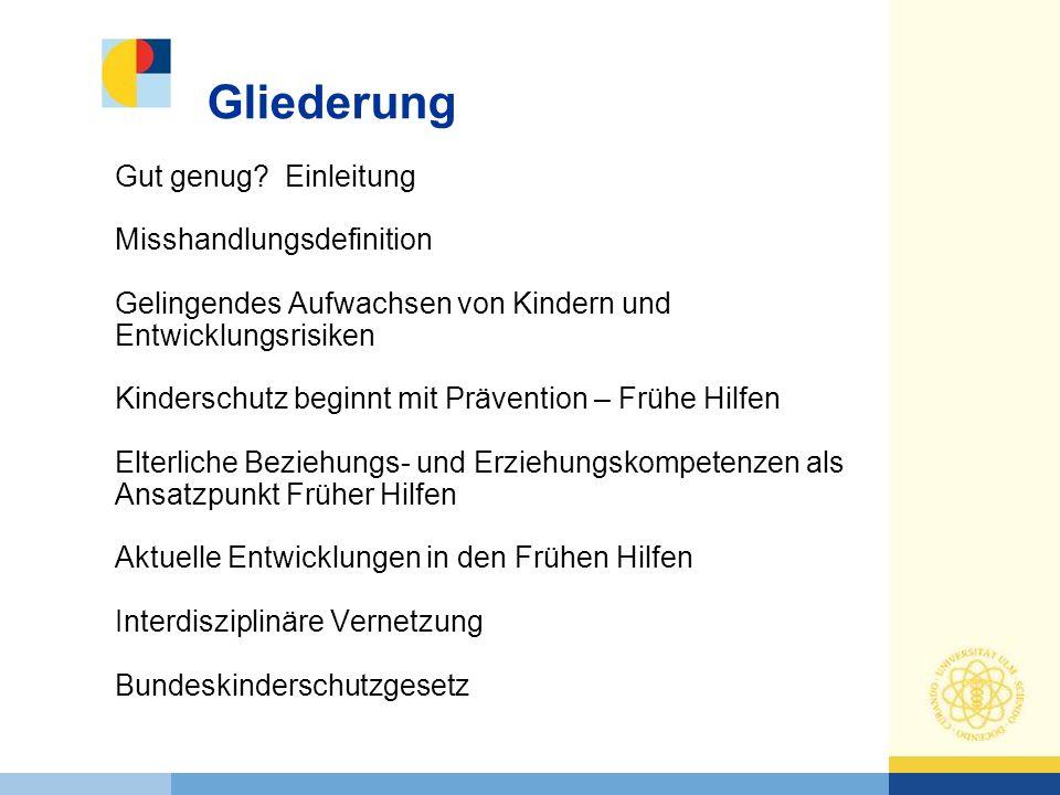 Fortbildungshandbuch 220 Seiten Präsentationen, Demovideos, Arbeits- und Infoblätter für die Fortbildung von Familienbesucherinnen 24 Module stehen für Multiplikatorinnen in Baden- Württemberg kostenfrei zur Verfügung erfolgreich evaluiert mit Teilnehmerinnen aus den Modellstandorten fortlaufend überarbeitet und aktualisiert Curriculum Familienbesucher