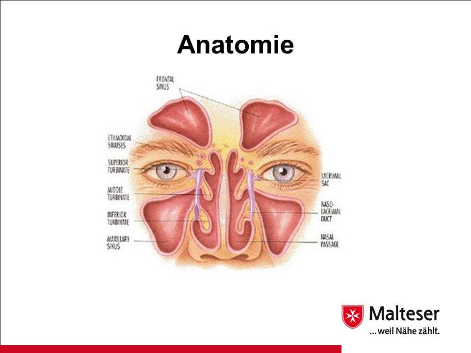 Prädisponierende und assoziierte Erkrankungen - Allergien - Analgetika Intoleranz - Asthma