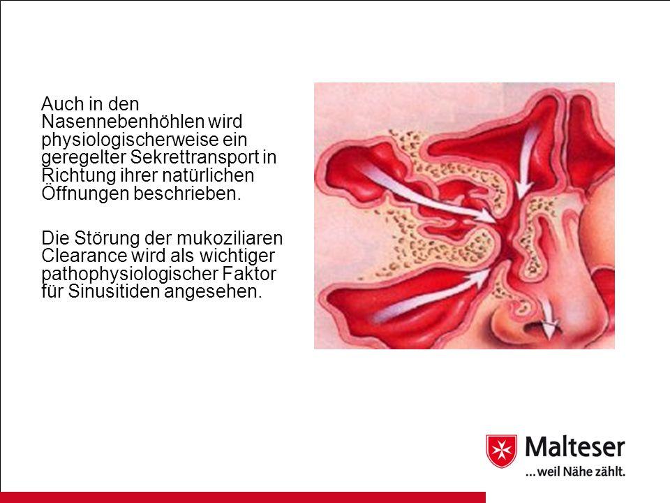 Auch in den Nasennebenhöhlen wird physiologischerweise ein geregelter Sekrettransport in Richtung ihrer natürlichen Öffnungen beschrieben. Die Störung