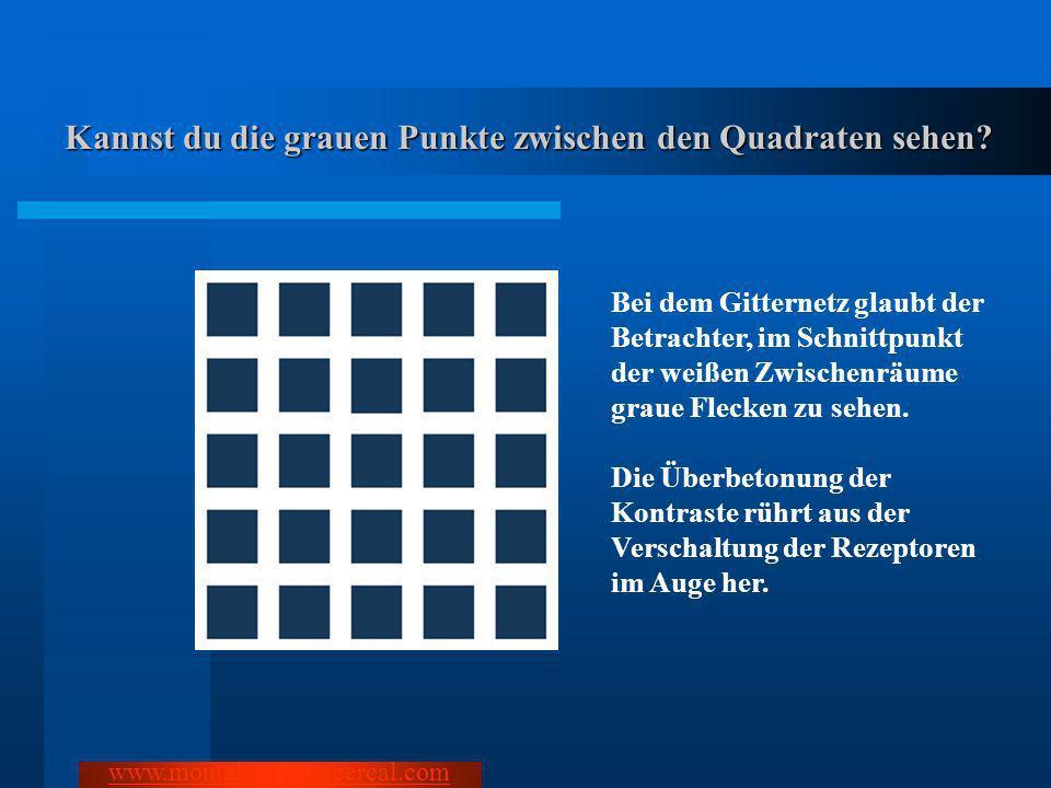 Kannst du die grauen Punkte zwischen den Quadraten sehen? www.montalegre-do-cercal.com Bei dem Gitternetz glaubt der Betrachter, im Schnittpunkt der w