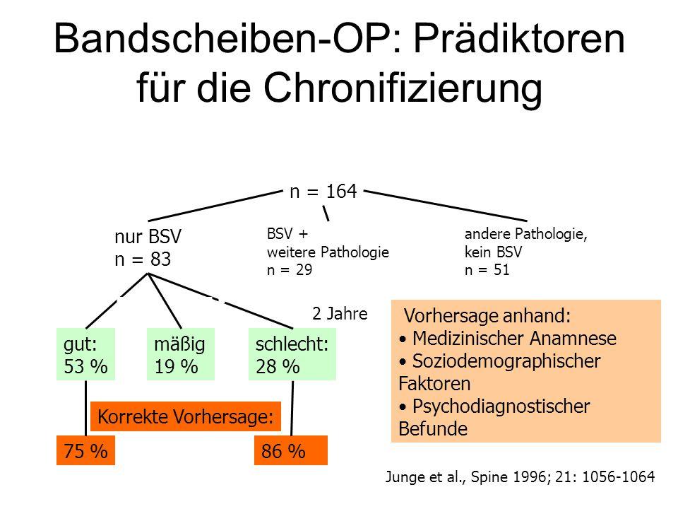 Bandscheiben-OP: Prädiktoren für die Chronifizierung Vorhersage anhand: Medizinischer Anamnese Soziodemographischer Faktoren Psychodiagnostischer Befu