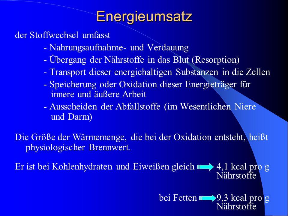 Energieumsatz der Stoffwechsel umfasst - Nahrungsaufnahme- und Verdauung - Übergang der Nährstoffe in das Blut (Resorption) - Transport dieser energie