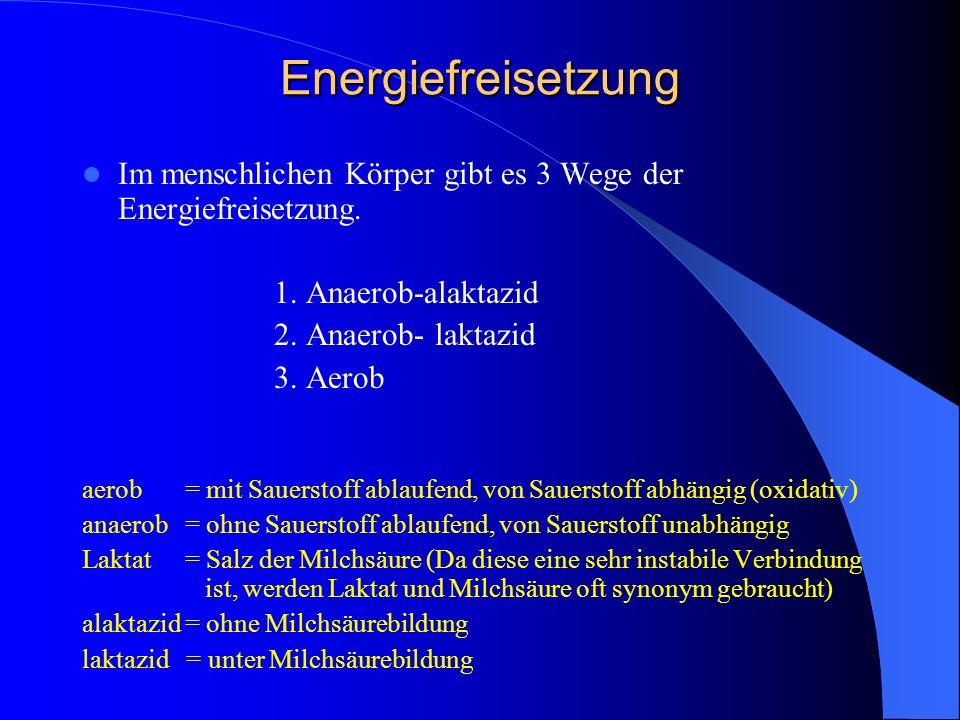 Energiefreisetzung Im menschlichen Körper gibt es 3 Wege der Energiefreisetzung. 1. Anaerob-alaktazid 2. Anaerob- laktazid 3. Aerob aerob = mit Sauers