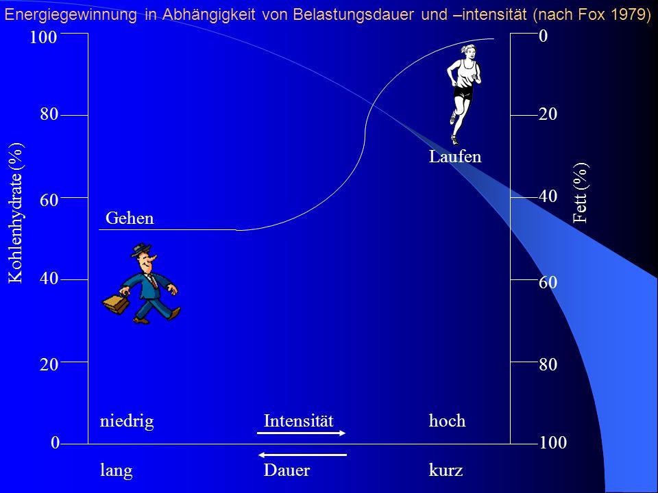 100 80 60 40 20 0 0 40 60 80 100 niedrig Intensitäthoch lang Dauerkurz Laufen Gehen Kohlenhydrate (%) Fett (%) Energiegewinnung in Abhängigkeit von Be