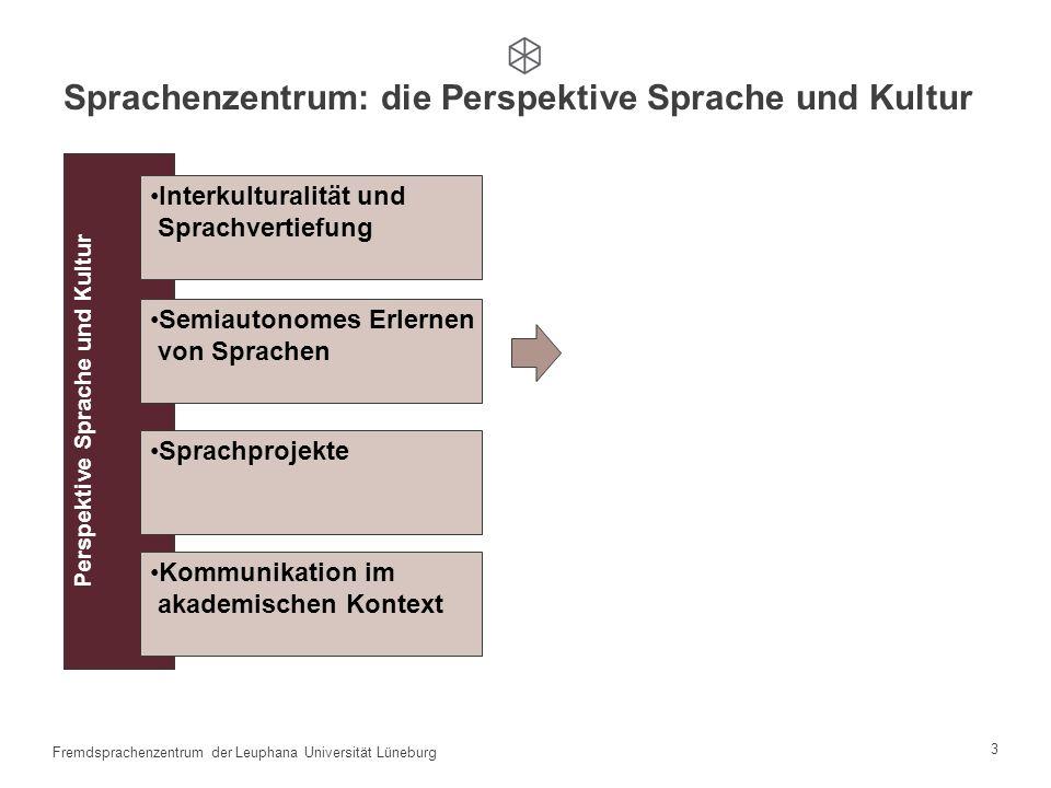 2 Fremdsprachenzentrum der Leuphana Universität Lüneburg Perspektive Sprache und Kultur Problematik Modularisierung Curriculumentwicklung (Leuphana-PO