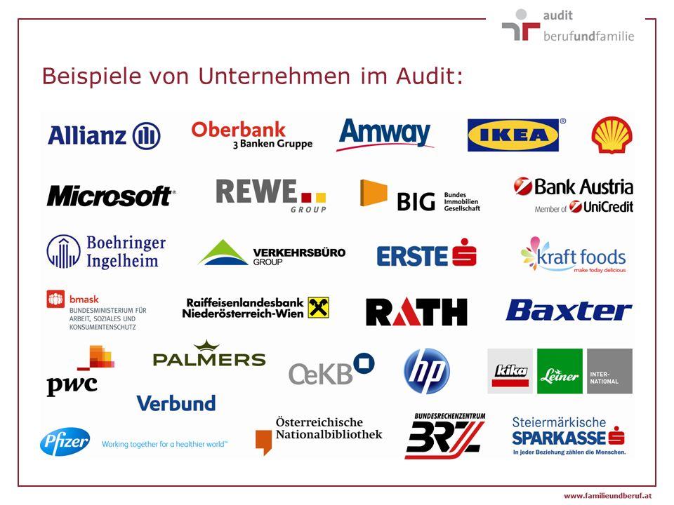 Beispiele von Unternehmen im Audit: