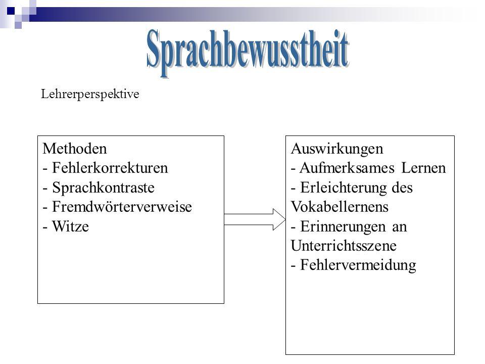 Lehrerperspektive Methoden - Fehlerkorrekturen - Sprachkontraste - Fremdwörterverweise - Witze Auswirkungen - Aufmerksames Lernen - Erleichterung des