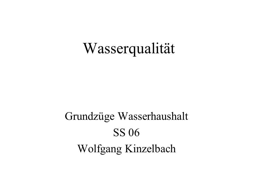 Wasserqualität Grundzüge Wasserhaushalt SS 06 Wolfgang Kinzelbach