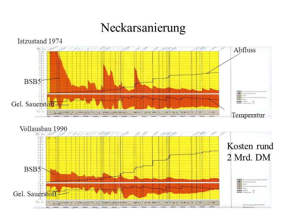 Neckarsanierung Istzustand 1974 Vollausbau 1990 Gel. Sauerstoff BSB5 Abfluss Temperatur Kosten rund 2 Mrd. DM