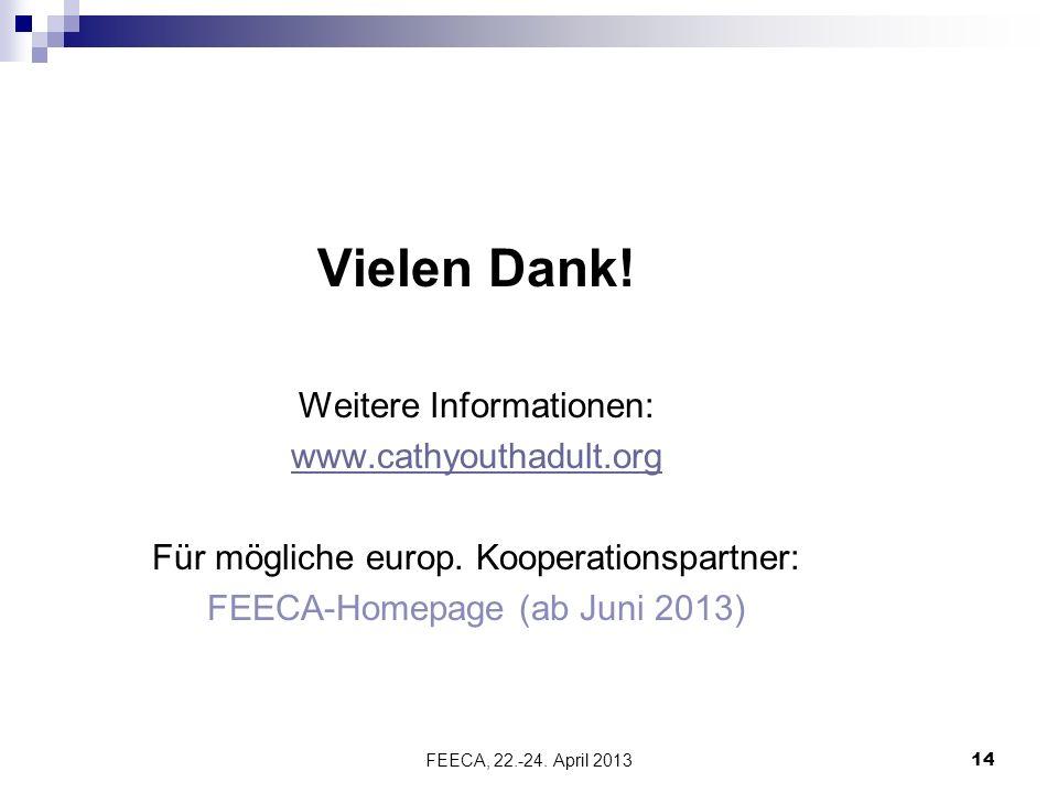 FEECA, 22.-24. April 2013 14 Vielen Dank.