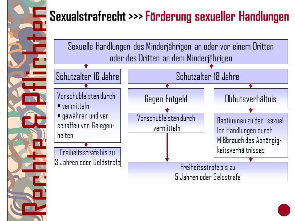 Sexualstrafrecht >>> Förderung sexueller Handlungen Sexuelle Handlungen des Minderjährigen an oder vor einem Dritten oder des Dritten an dem Minderjäh