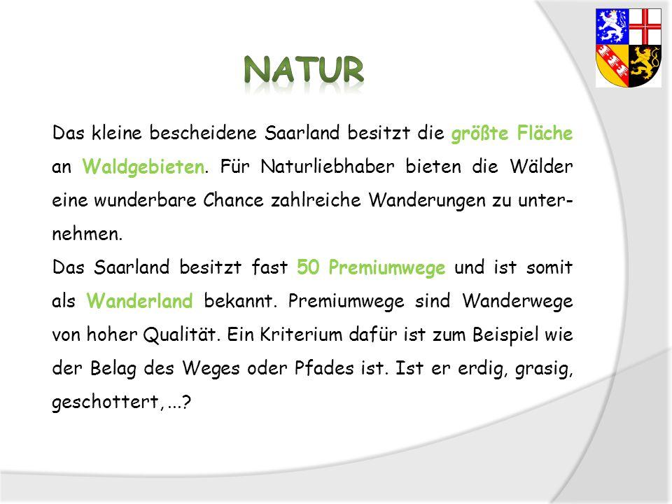 Das kleine bescheidene Saarland besitzt die größte Fläche an Waldgebieten. Für Naturliebhaber bieten die Wälder eine wunderbare Chance zahlreiche Wand