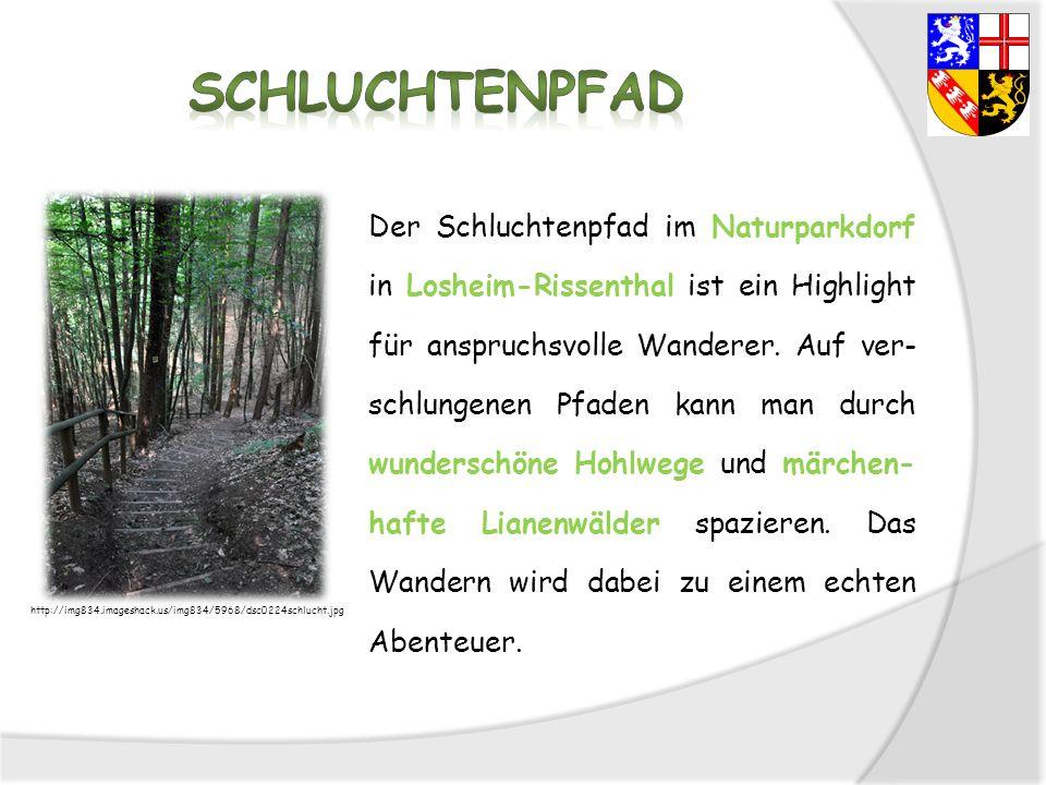Der Schluchtenpfad im Naturparkdorf in Losheim-Rissenthal ist ein Highlight für anspruchsvolle Wanderer. Auf ver- schlungenen Pfaden kann man durch wu