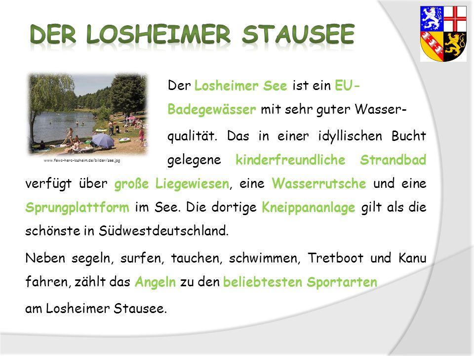 Der Losheimer See ist ein EU- Badegewässer mit sehr guter Wasser- qualität. Das in einer idyllischen Bucht gelegene kinderfreundliche Strandbad verfüg