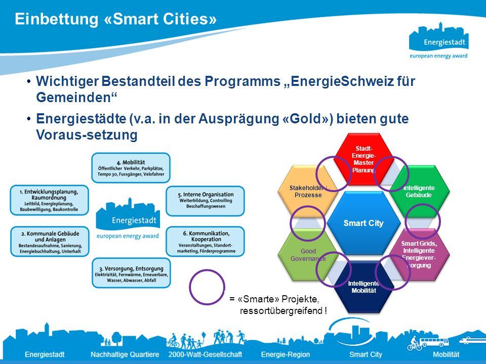 Einbettung «Smart Cities» 8 Ändernde Rahmenbedingungen für die Energiepolitik der Städte19.3.2013 Wichtiger Bestandteil des Programms EnergieSchweiz f