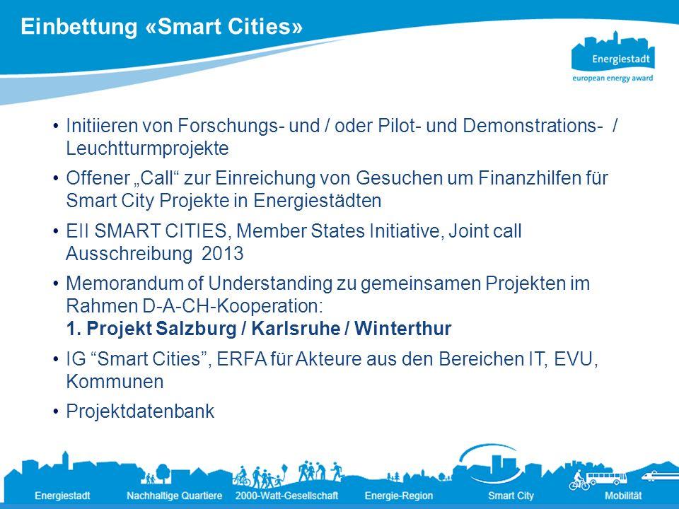 9 Ändernde Rahmenbedingungen für die Energiepolitik der Städte19.3.2013 Initiieren von Forschungs- und / oder Pilot- und Demonstrations- / Leuchtturmp
