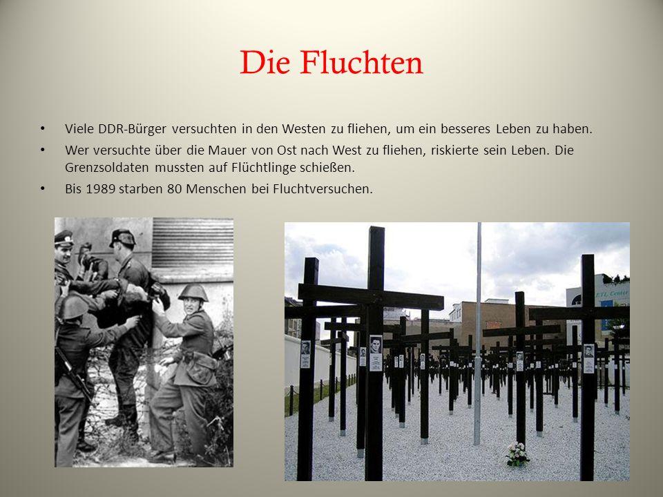 Die Fluchten Viele DDR-Bürger versuchten in den Westen zu fliehen, um ein besseres Leben zu haben. Wer versuchte über die Mauer von Ost nach West zu f