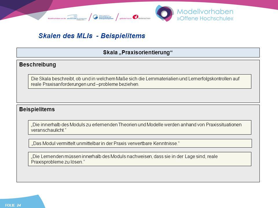 FOLIE 24 Skalen des MLIs - Beispielitems Skala Praxisorientierung Beispielitems Die innerhalb des Moduls zu erlernenden Theorien und Modelle werden anhand von Praxissituationen veranschaulicht.