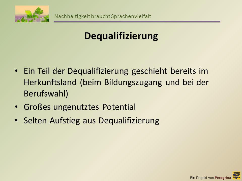 Ein Projekt von Peregrina Nachhaltigkeit braucht Sprachenvielfalt Dequalifizierung Ein Teil der Dequalifizierung geschieht bereits im Herkunftsland (b