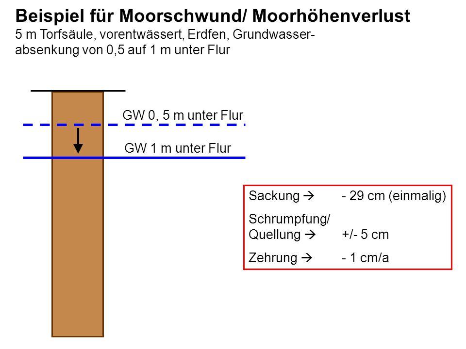 GW 0, 5 m unter Flur GW 1 m unter Flur Ableitung von Sackung und Zehrung Sackung: 0 Zehrung 2 – 4 dm 4 – 8 dm 8 – 12 dm Zehrung geringer Berechnungs- fehler Sackung Sackung nicht von Zehrung trennbar