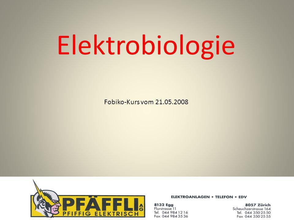 Elektrobiologie Fobiko-Kurs vom 21.05.2008
